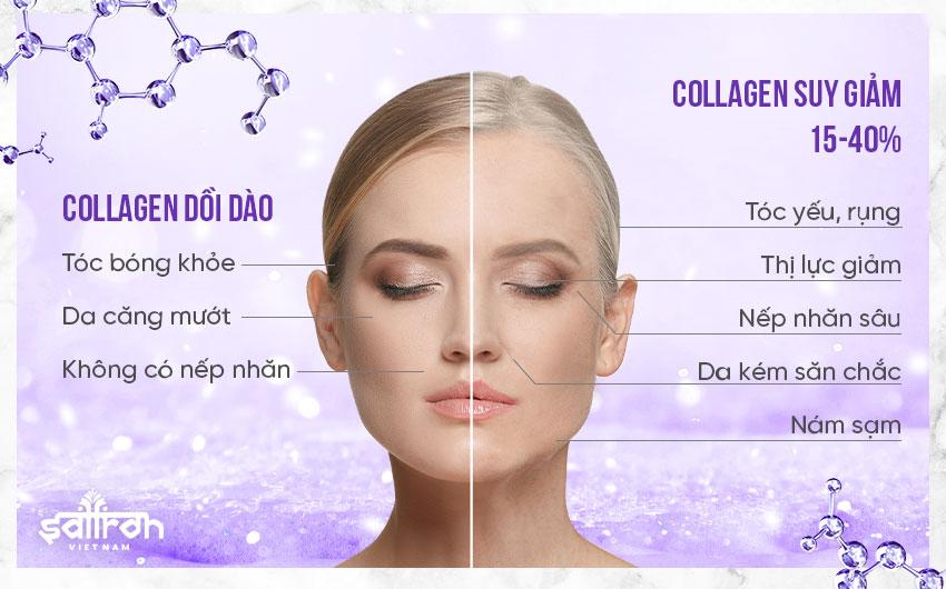 1. Hiểu rõ bản chất collagen