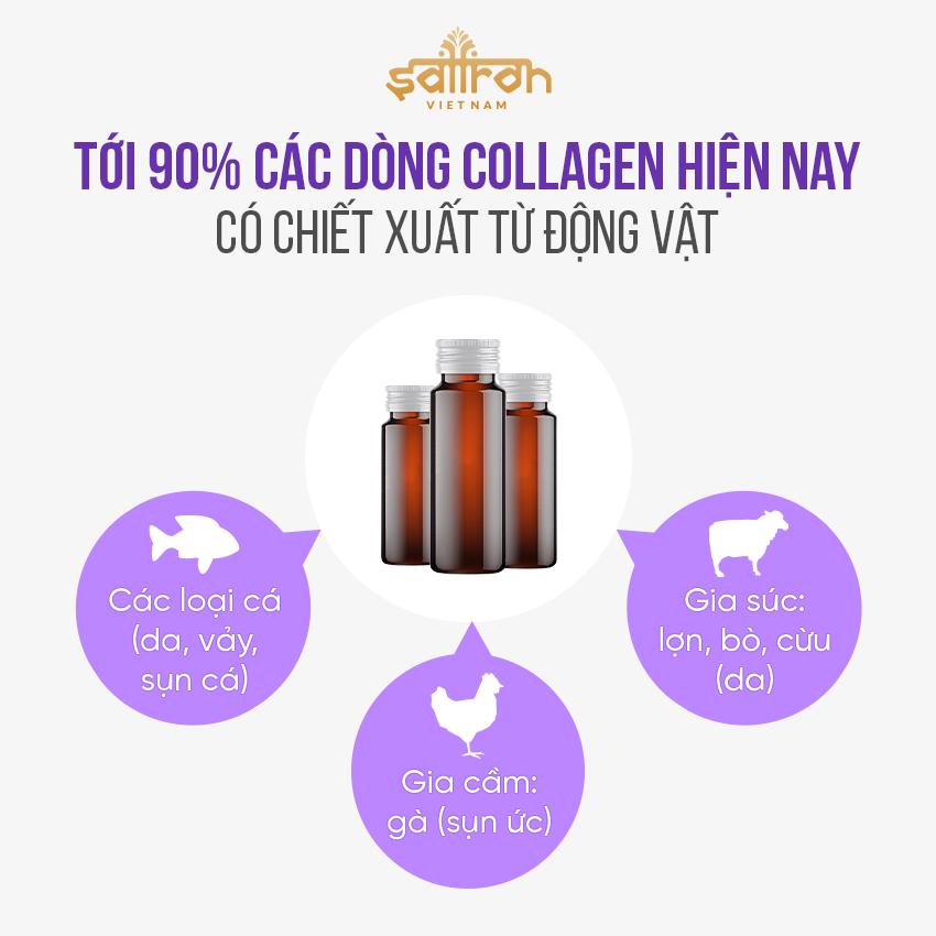 Collagen chiết xuất từ thực vật là gì
