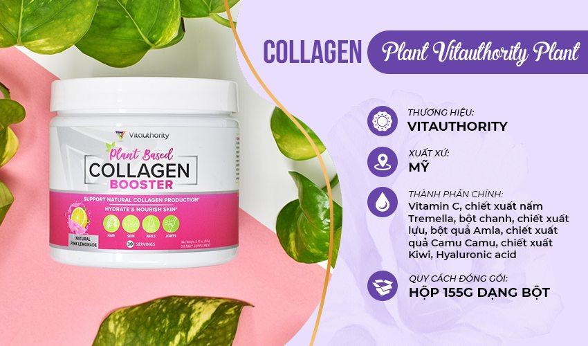 Một số loại collagen chiết xuất từ thực vật tốt hiện nay