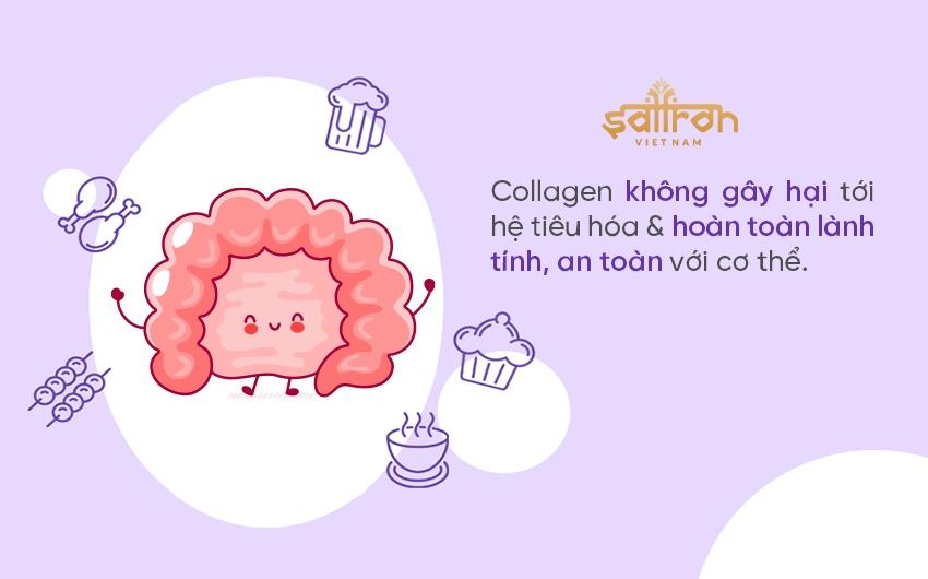 Uống collagen có ảnh hưởng tới hệ tiêu hóa không?