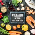 Collagen có trong thực phẩm nào? Top 15 loại giàu collagen nhất