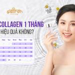 Uống collagen 1 tháng có hiệu quả không? Xem ngay 3 loại uống là đẹp!